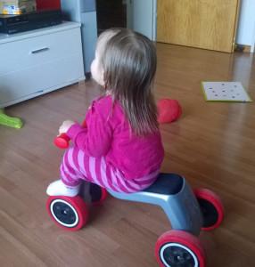 Mäuslein auf dem Rider