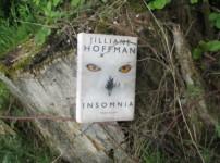 """""""Insomnia"""" fesselt und baut sehr hohe Spannung auf !!"""