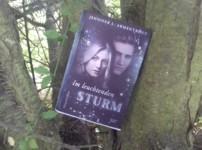 """Mit """"Im leuchtenden Sturm"""" ist Jennifer L. Armentrout eine unterhaltsame Fortsetzung gelungen !! !!"""