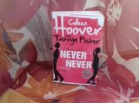 """Never Never"" hat es leider nicht geschafft mich durchgehend zu fesseln !!"