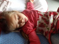 """Kindern den Tod erklären mit """"Bello wacht nicht mehr auf"""""""